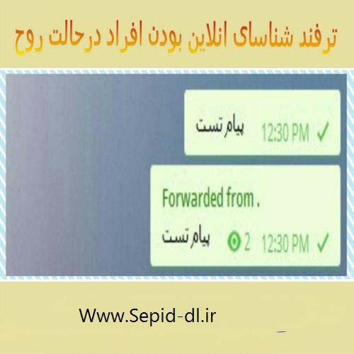 ترفند شناسایی افراد در حالت روح تلگرام
